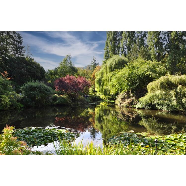 Butchart Gardens Pond