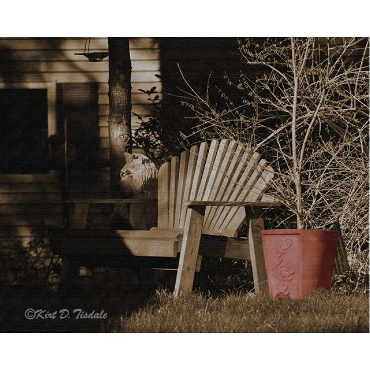 Outdoor Chair By The Red Pot