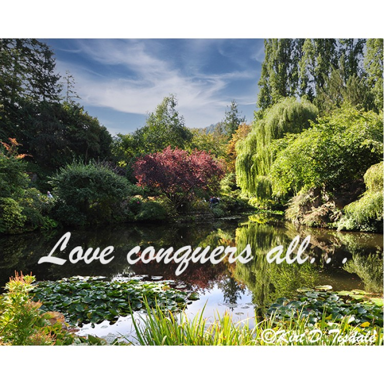 Love Conquers All Mountain Meadow Lake