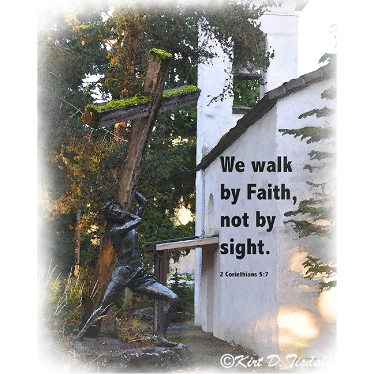 Seek His Peace: Snow Clearing In The Woods