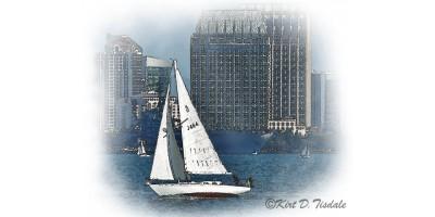 Sailboat In San Diego Bay