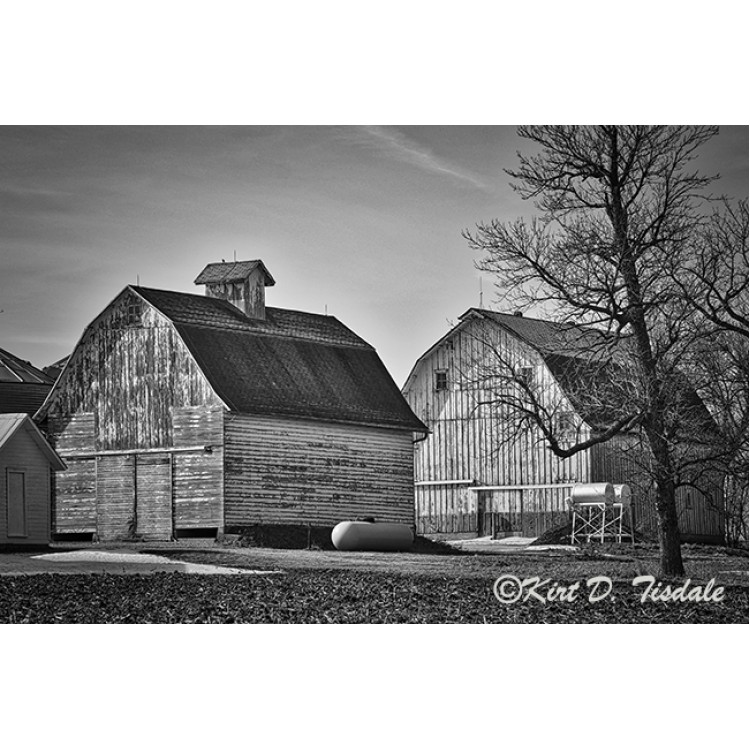 Twin Barns In Black And White
