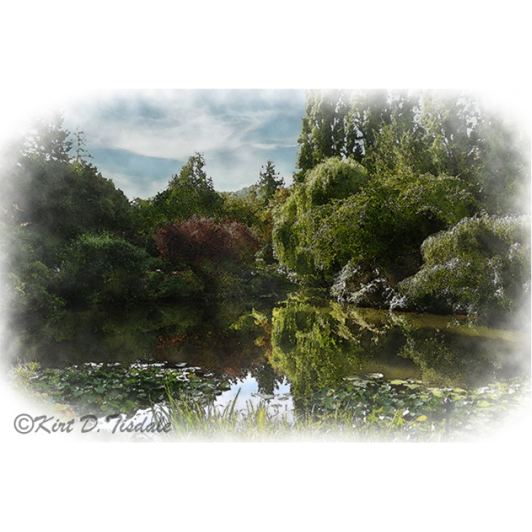 The Pond In Watercolor