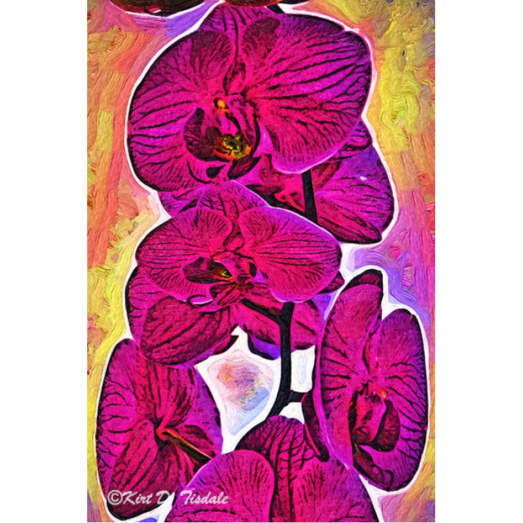Colorado Vacation In Fauvism