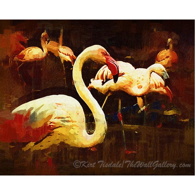 Impasto Flamingo