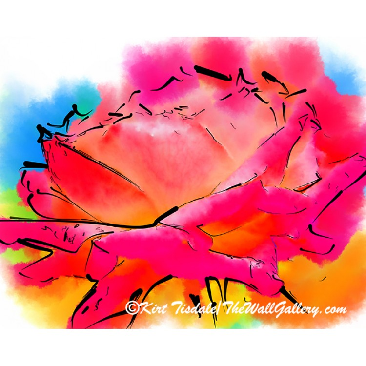 Pink and Orange Rose In Abstract Watercolor