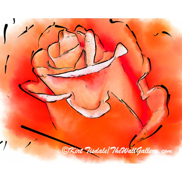 Orange Rose Bud In Abstract Watercolor