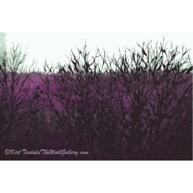 Purple Barren Branches