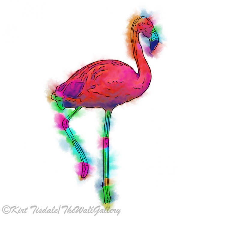 Abstract Flamingo Step