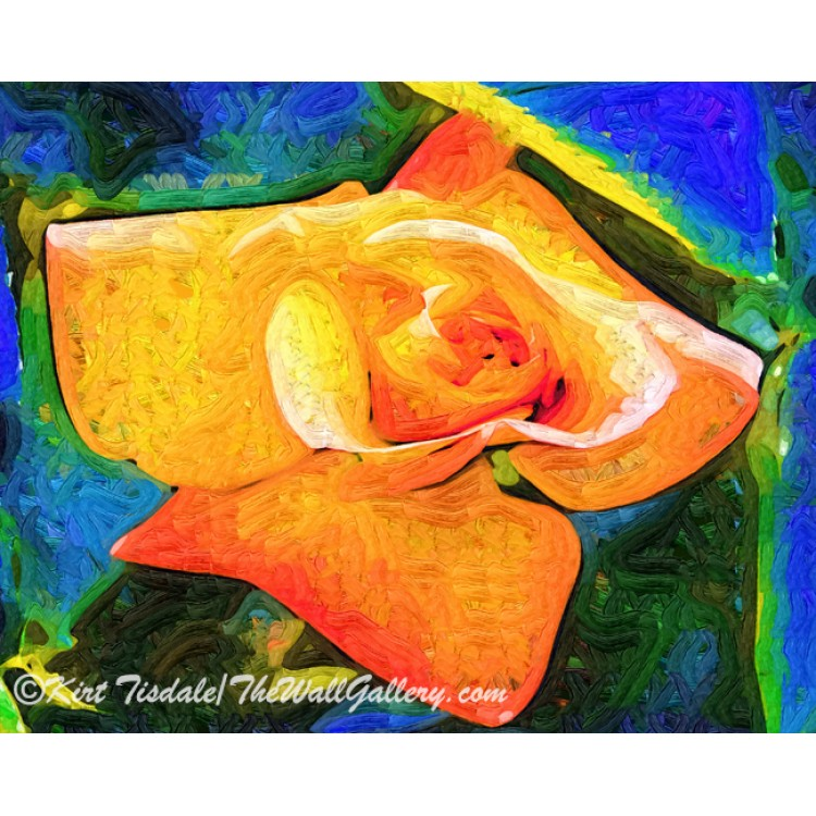 Orange Bud In Fauvism