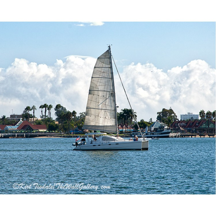 Abstract Camellia In Red