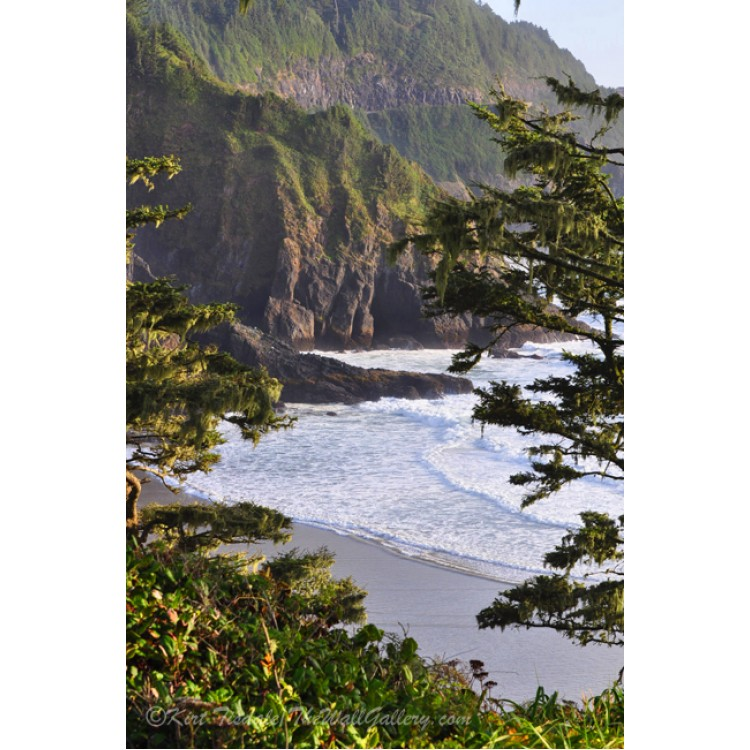 Coastal Bluff