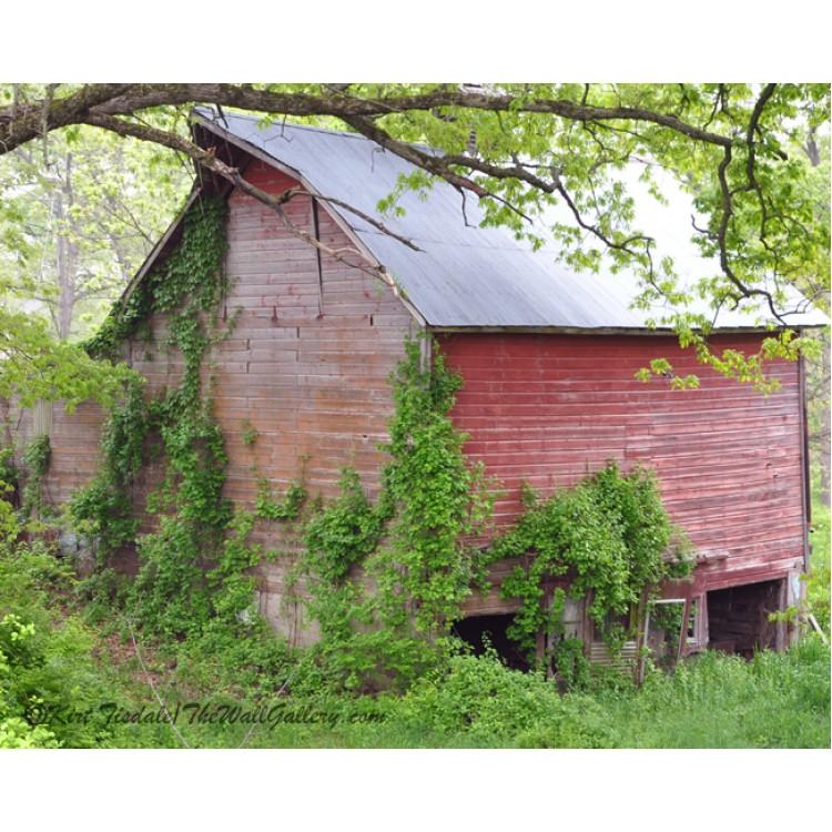 Cedar Rapids Barn