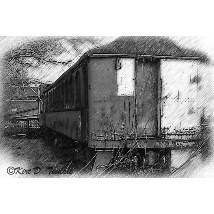 The Garden Kitchen Sketched