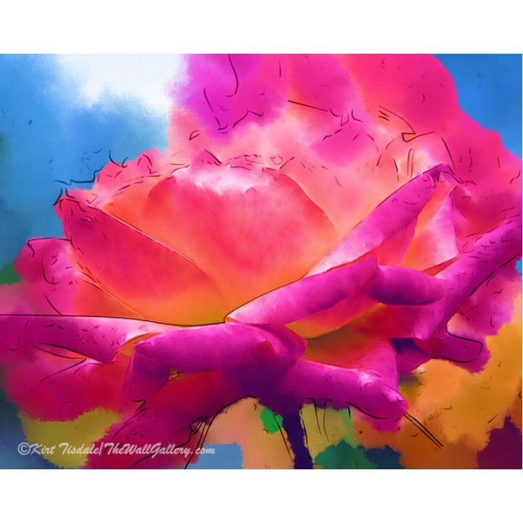 Soft Rose Bloom In Pink and Orange