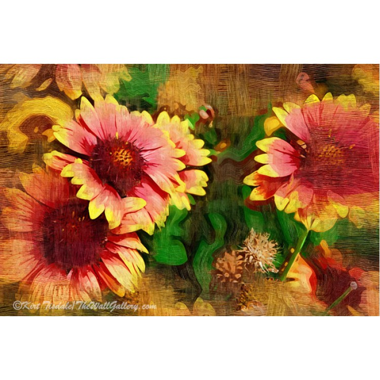Fall Flowers In Oil