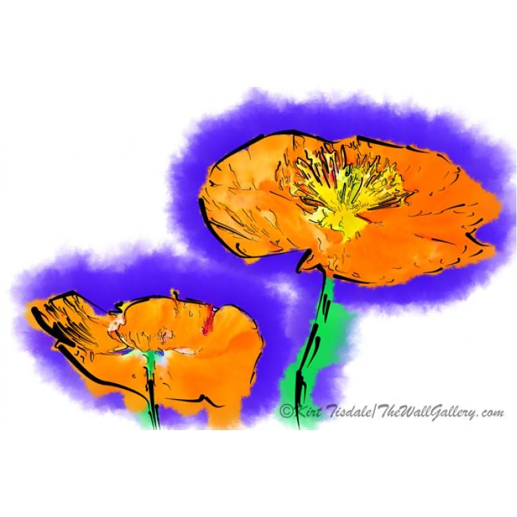 Orange Poppy Pair