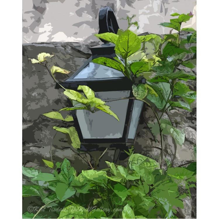 Yard Lamp And Vine