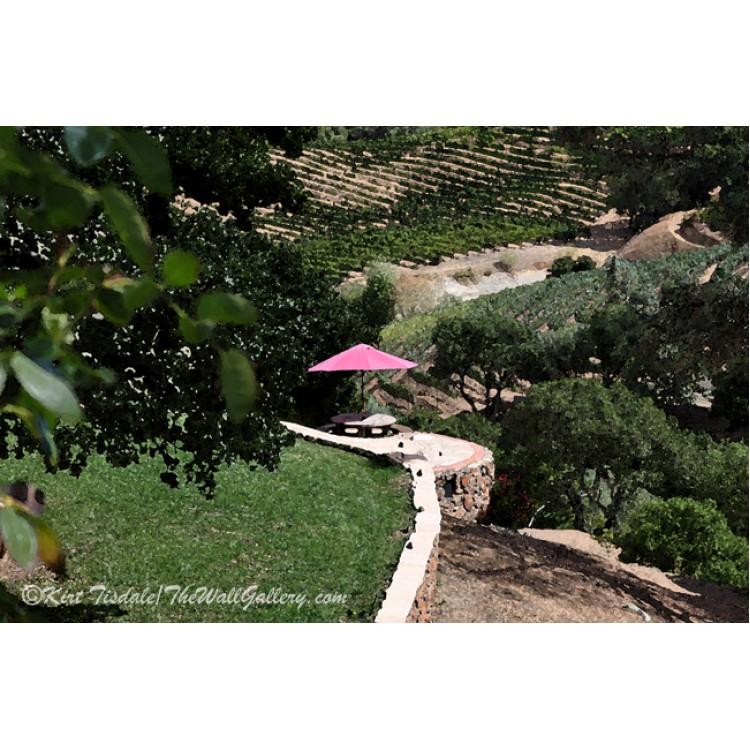 Umbrella On The Overlook
