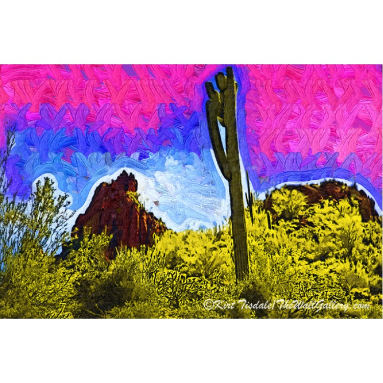 Saguaro In The Desert