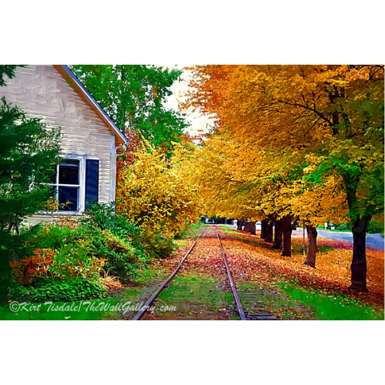 Tracks By The House