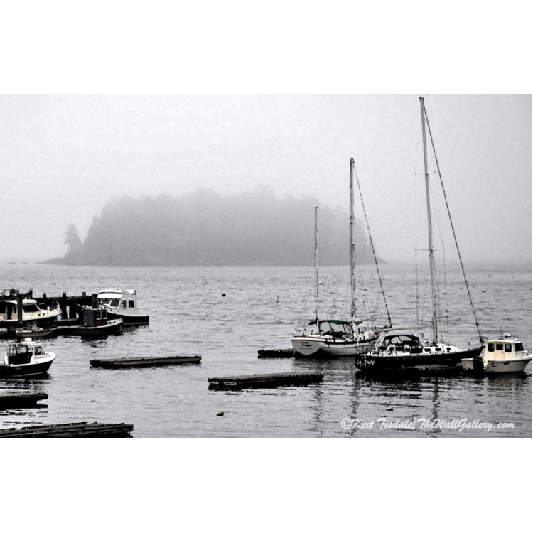 The Fog And The Island