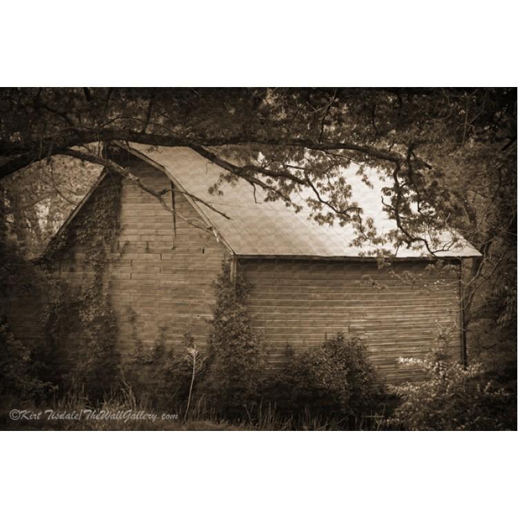 Cedar Rapids Barn In Sepia
