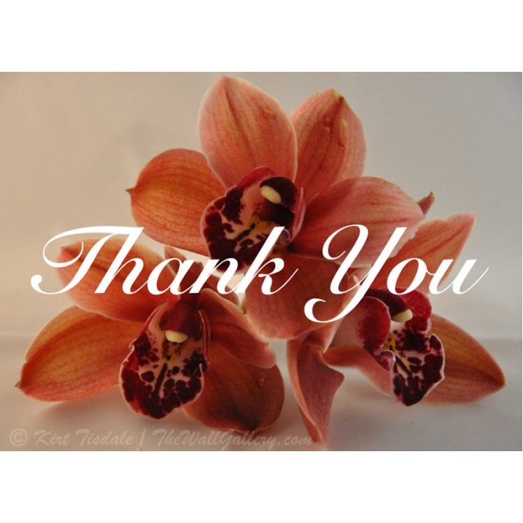 Orange Orchid Trio Thank You Card